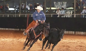 Henrique Paccola Ribeiro a maior pontuação do Working Cow Horse